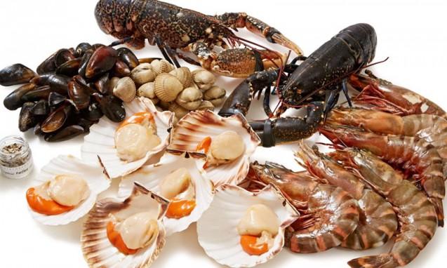 海老や貝などの新鮮な魚介類|副腎疲労blog