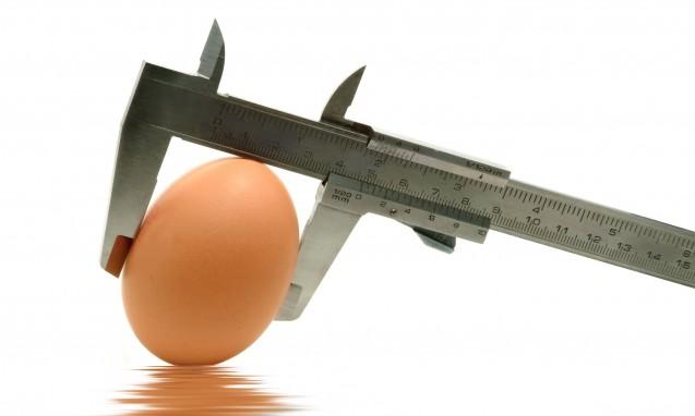メジャーで卵の大きさを測っている写真|副腎疲労blog