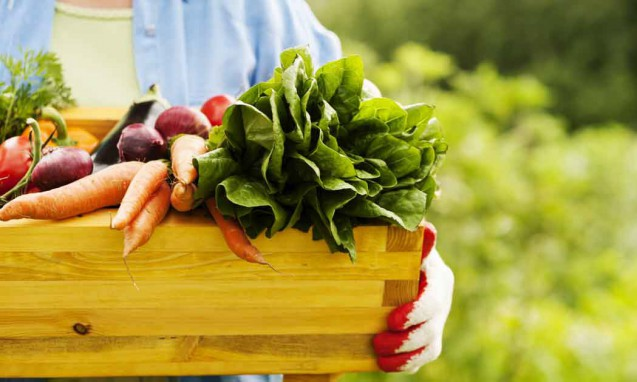 木の箱に入った新鮮な野菜を持っている人|副腎疲労blog